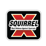 Squirrrel-X_Vector Logo (002)